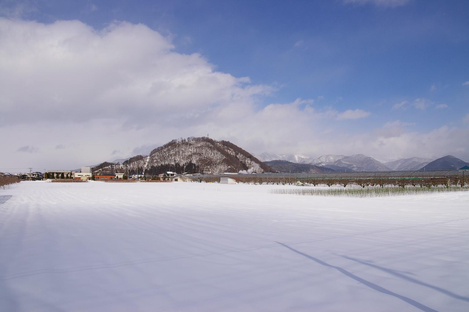 大森山眺め。遠くに奥羽山脈
