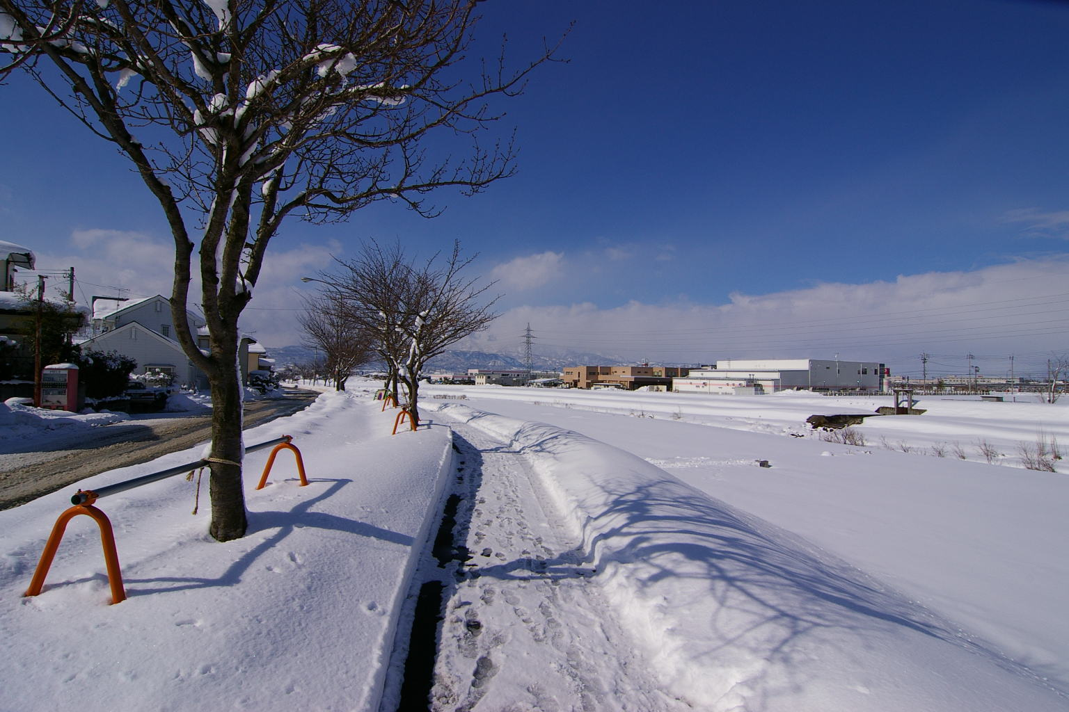 東根市野川 「冬の散歩道」