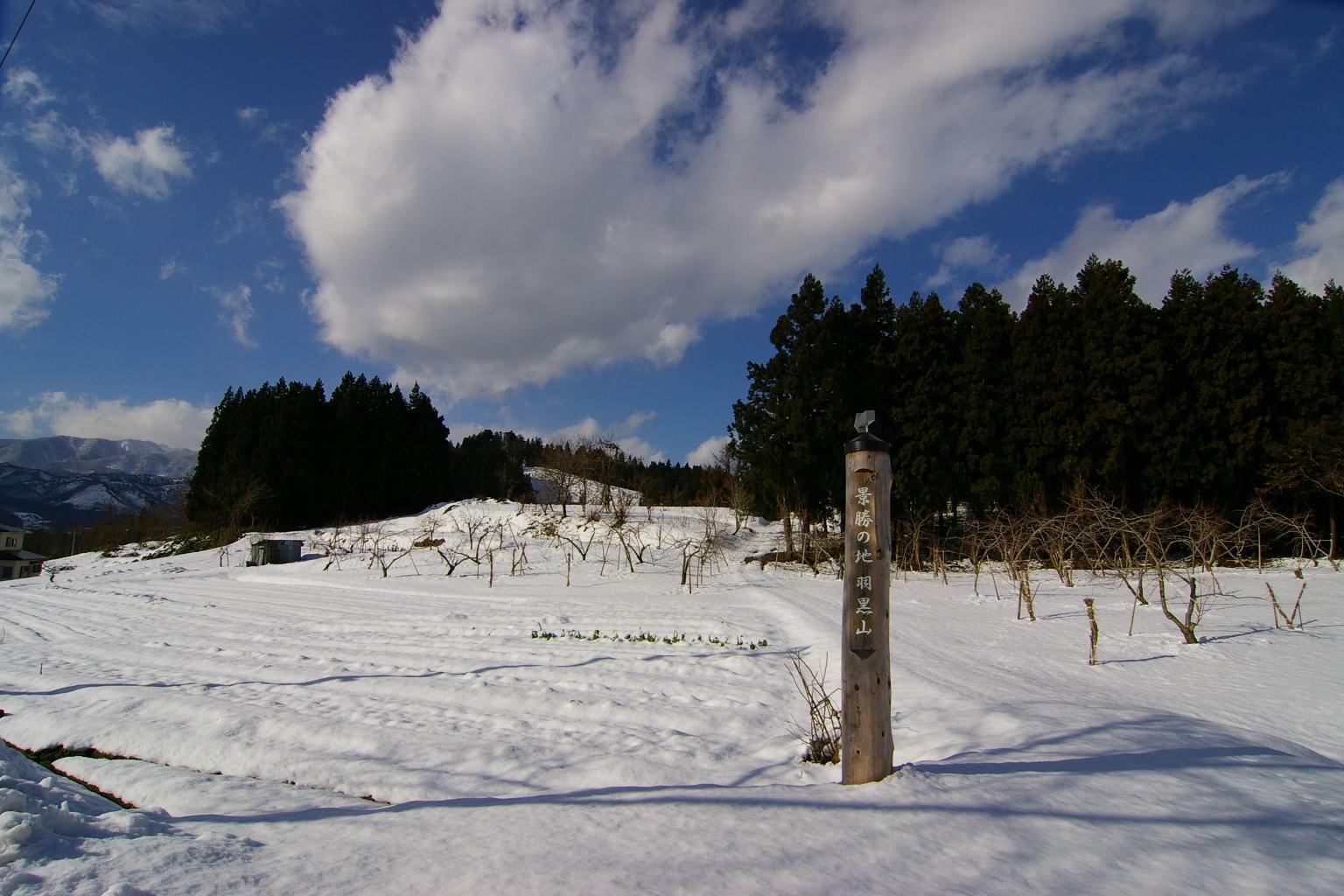 村山市 雪の風景です