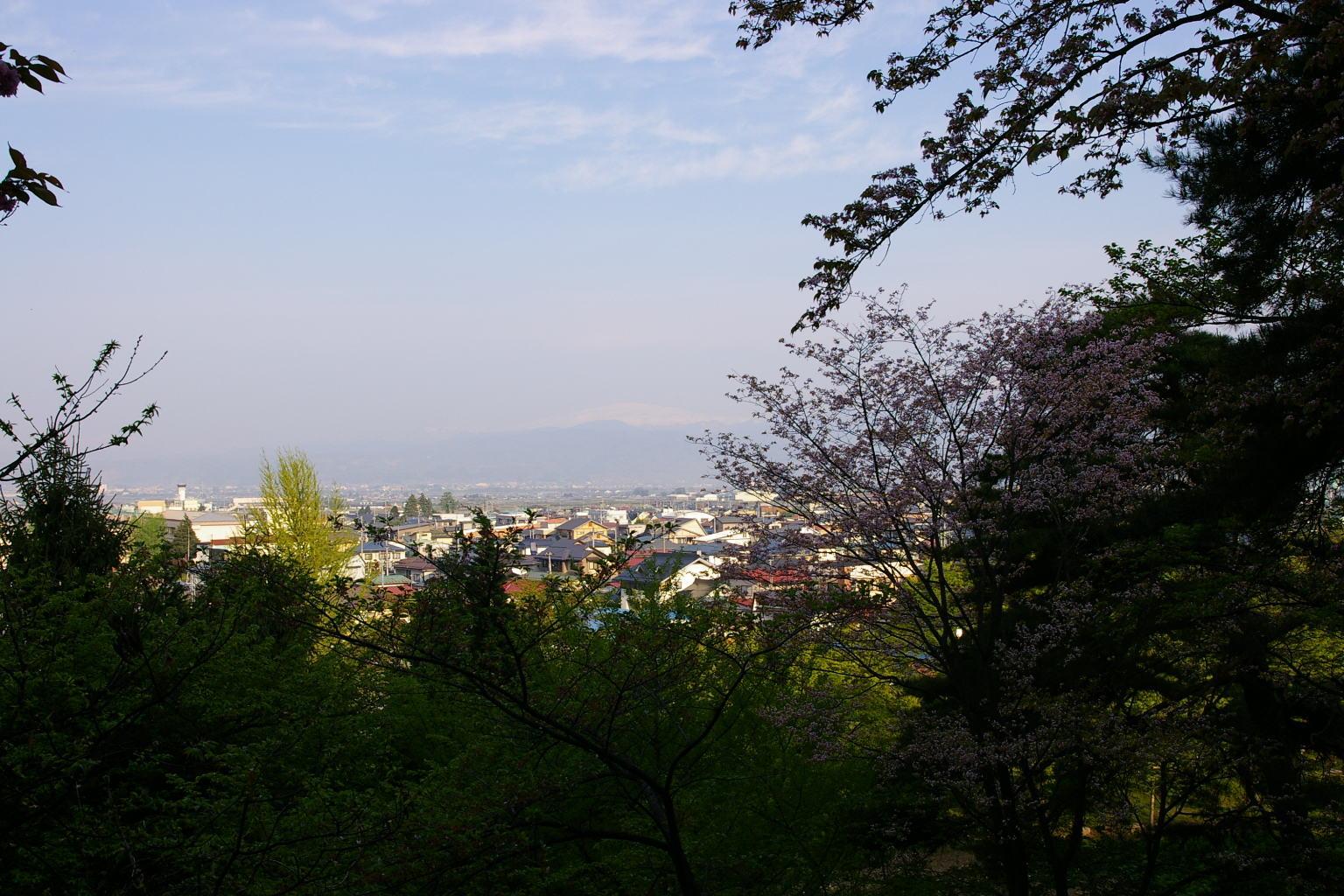 花咲く若木山からの月山眺め