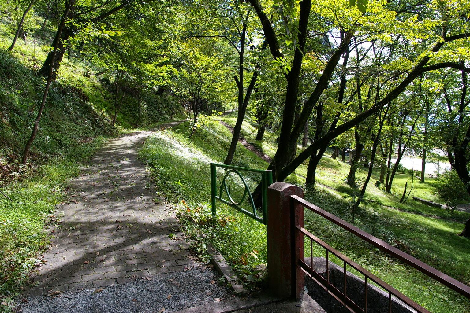 若木山を登る