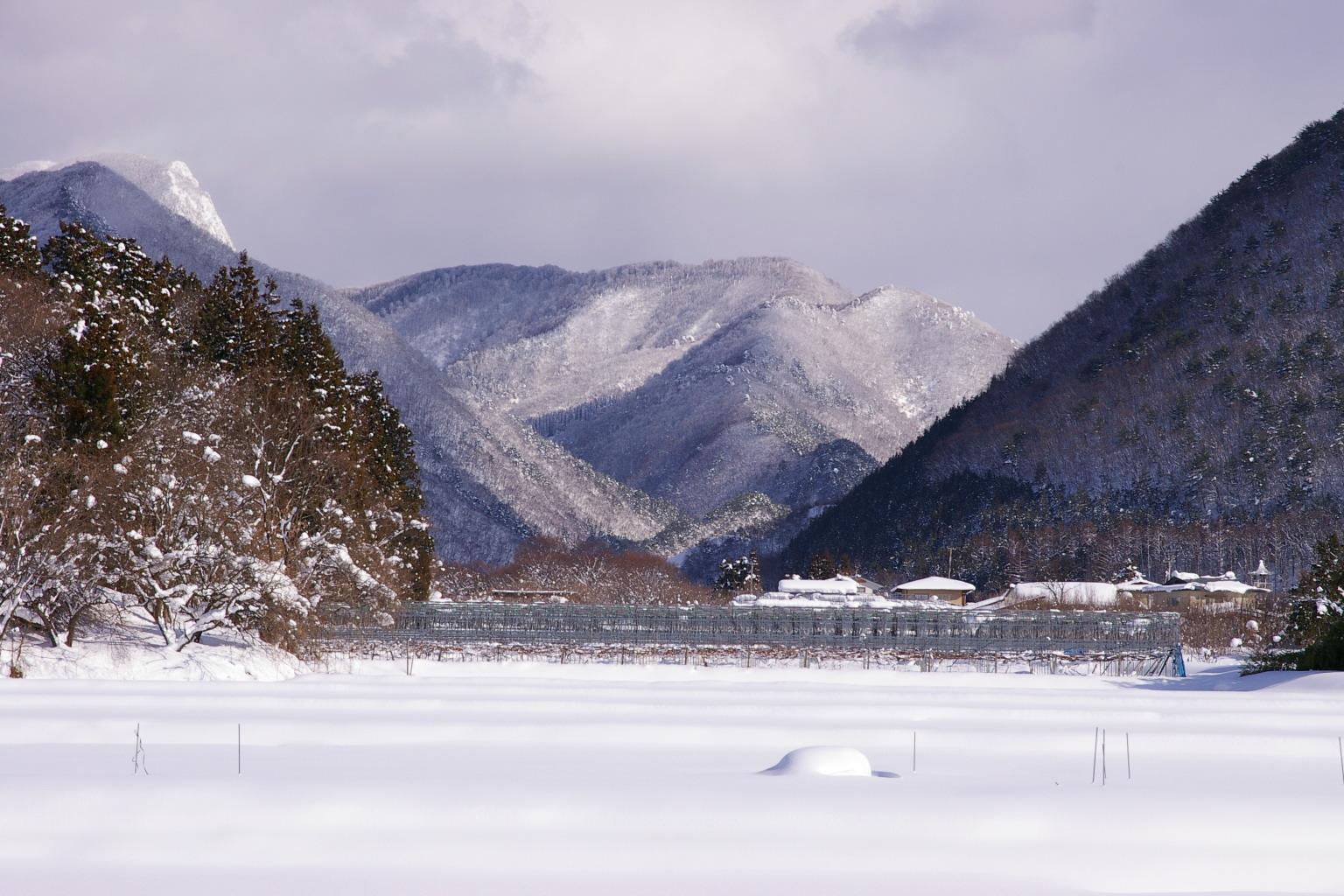 東根市観音寺の雪の風景その3