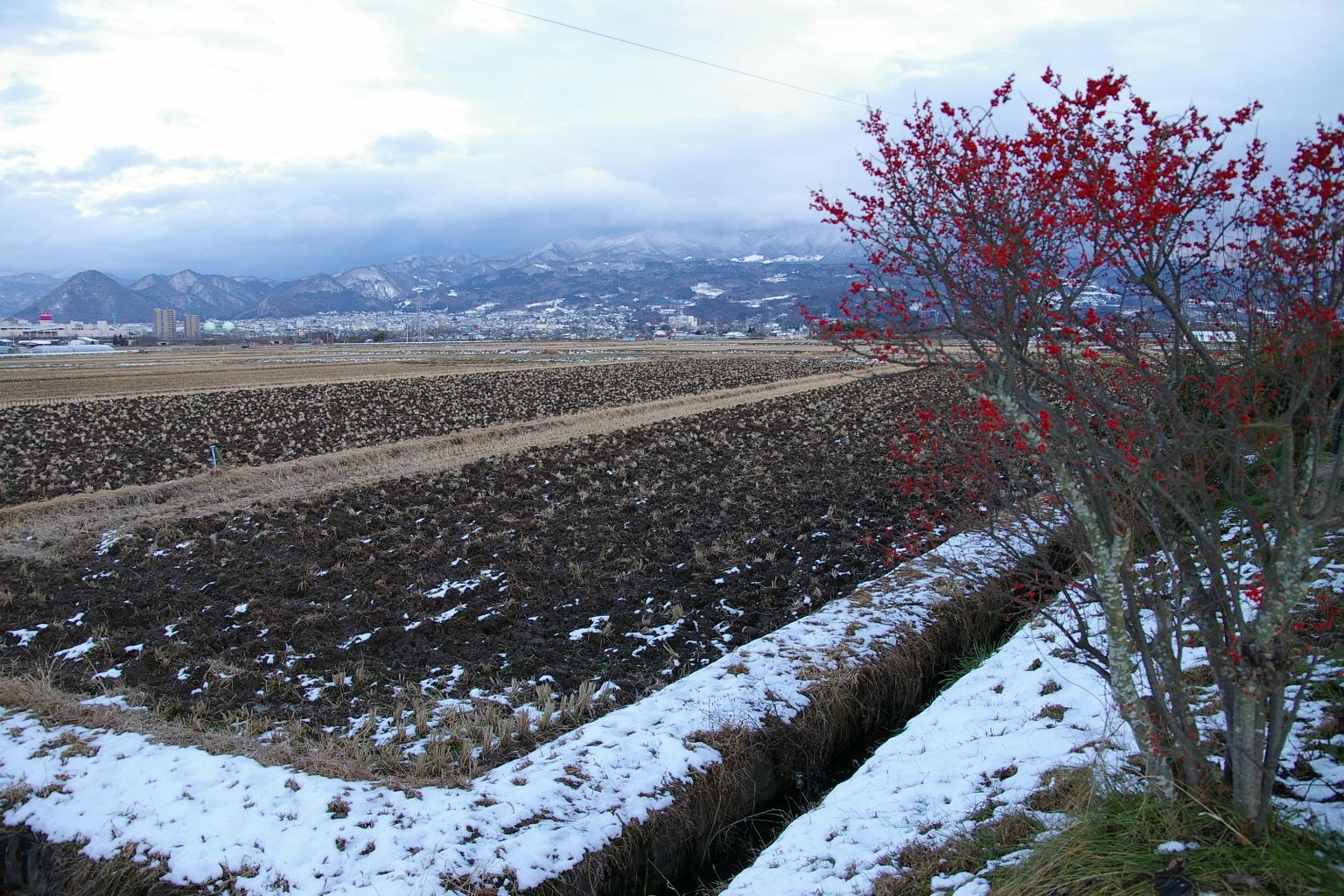 山形市 蔵王のある冬の風景