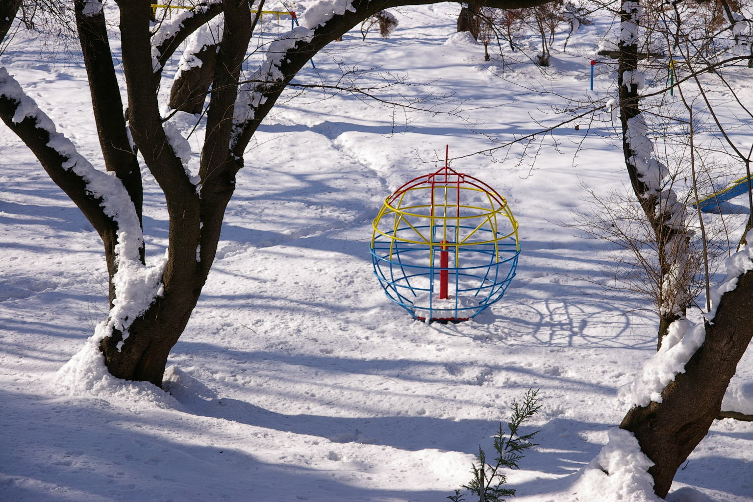 若木山から若木山公園を眺める