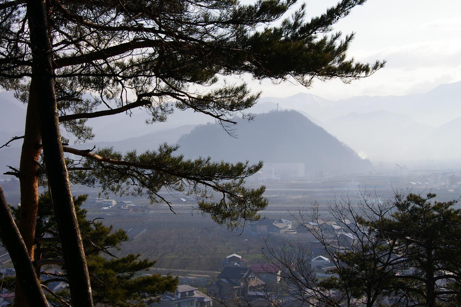 大森山眺め