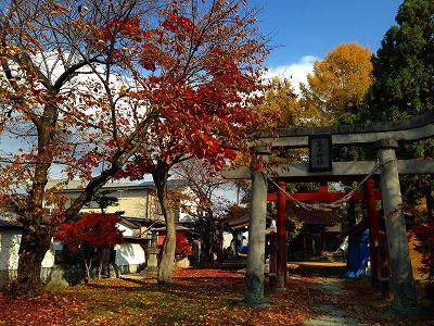 紅葉の若木神社