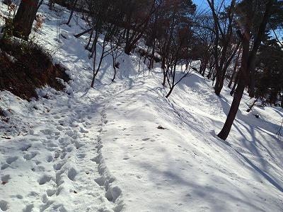 若木山の冬景色