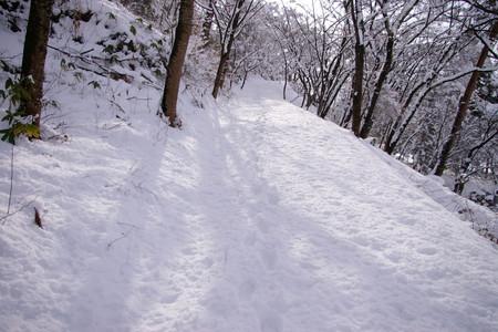 若木山の道