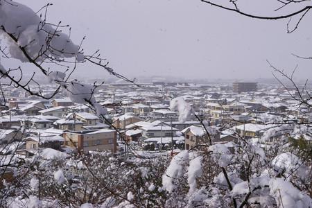 冬の神町眺め