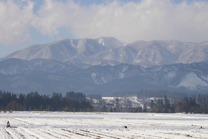 葉山の雪景色