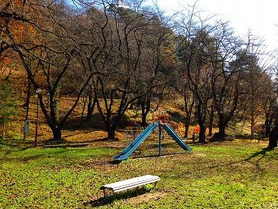 晩秋の若木山公園