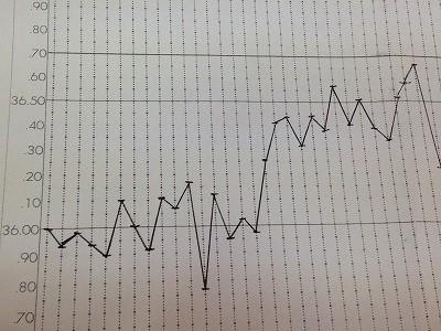 お客様の基礎体温表