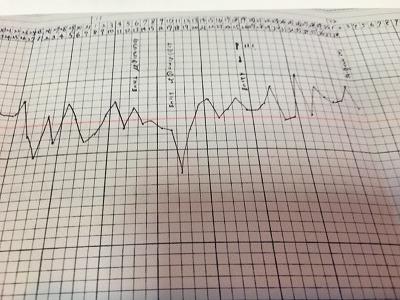 妊娠した基礎体温表