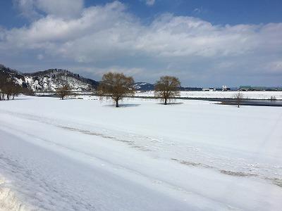 最上川の河川敷の冬景色