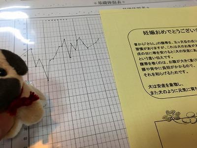 妊娠されたお客さまの基礎体温表