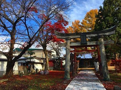 若木神社の紅葉