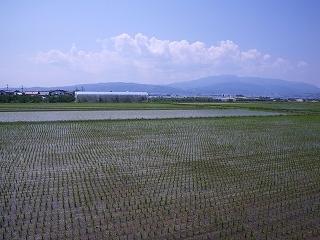 東根市小田島から眺めた葉山と月山は雲隠れ
