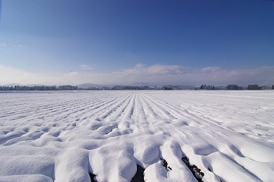 山形県村山市 葉山眺め 雪が降った日