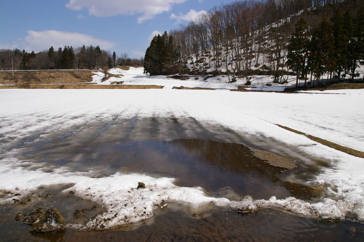 村山市の雪解け風景