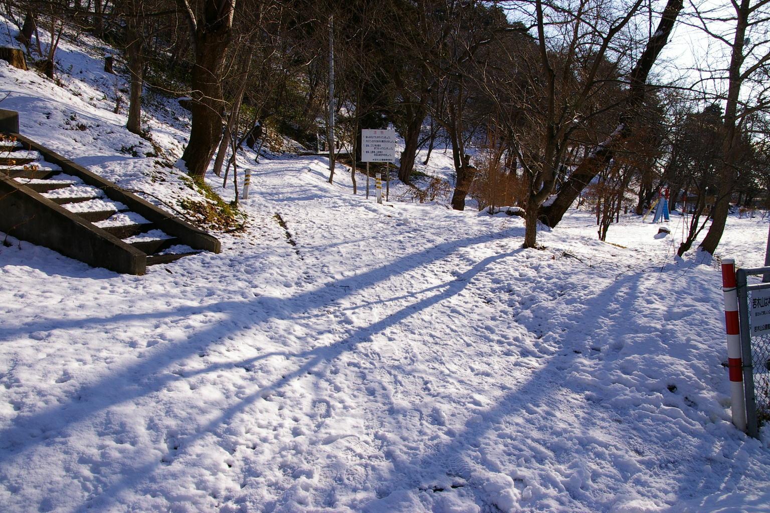 雪の若木山に登る道