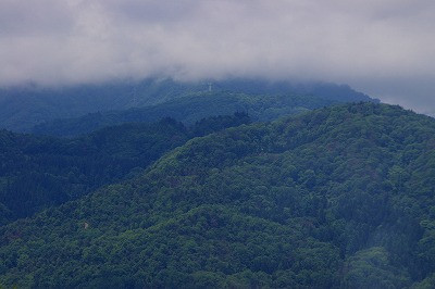 葉山は雲隠れ