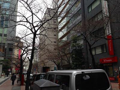 """東京、日本橋の桜の木"""""""