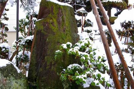 雪景色の我家の庭