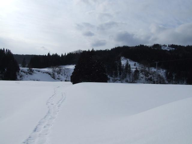 遥かなる雪原を、僕は歩く、歩く。
