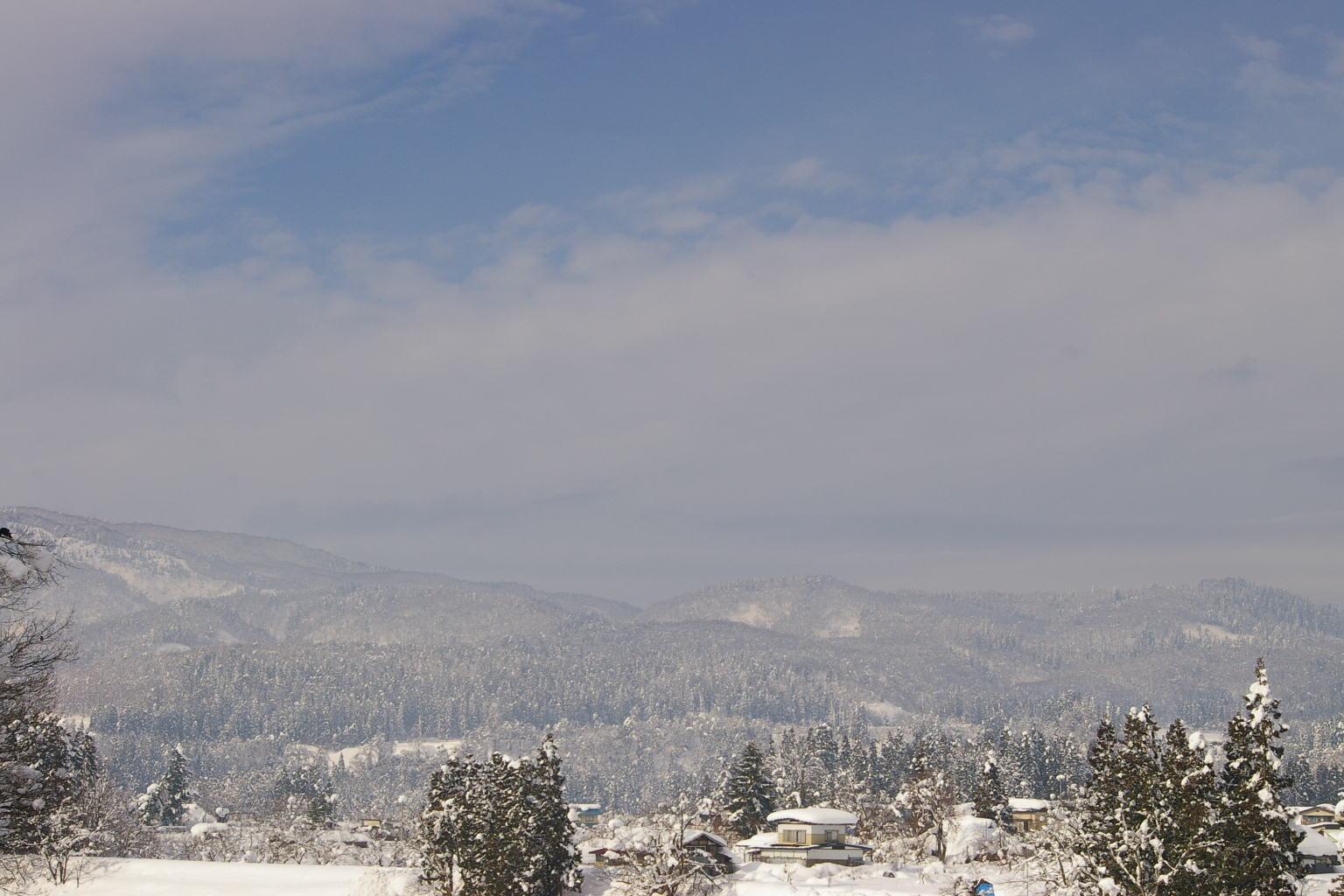 年末からの大雪で、ここ村山の地はすっかりと雪の里の状態です。