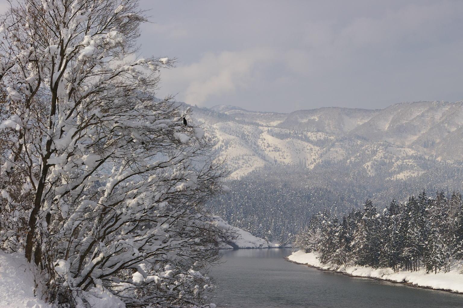 三ヶ瀬(みかのせ)橋から最上川の眺め