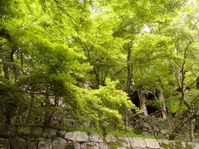 京都現代美術館も訪れましたが、とっても静寂していて心が癒されました。