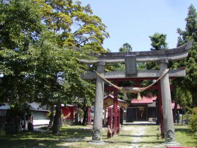 若木神社も初夏の香り