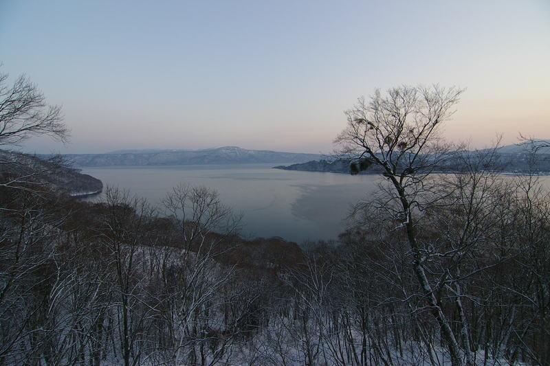 青森県十和田湖 ヤドリギ