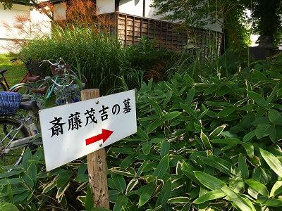 斎藤茂吉のお墓